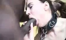 Husband Movies His Being Servant for BBC